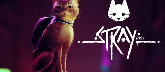 Stray Free Download